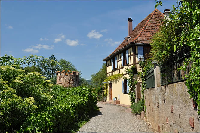 La promenade des remparts de Bergheim